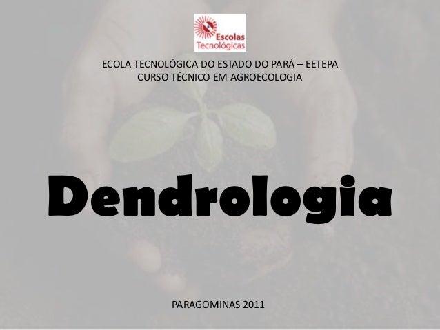 ECOLA TECNOLÓGICA DO ESTADO DO PARÁ – EETEPA        CURSO TÉCNICO EM AGROECOLOGIADendrologia              PARAGOMINAS 2011