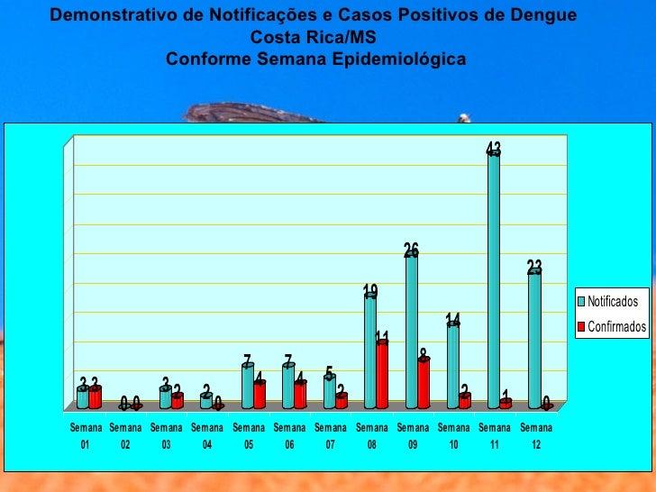 Dengue Slide 3