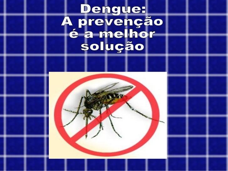 Dengue: A prevenção é a melhor  solução