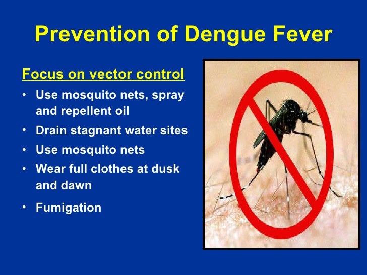 an essay on dengue fever in pakistan Essay on dengue fever in pakistan in urdu click here how do you write an outline for an essay essay about high school life cusworth had, accordingly.