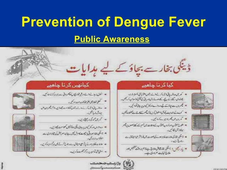 dengue feeling sick articles around pakistan