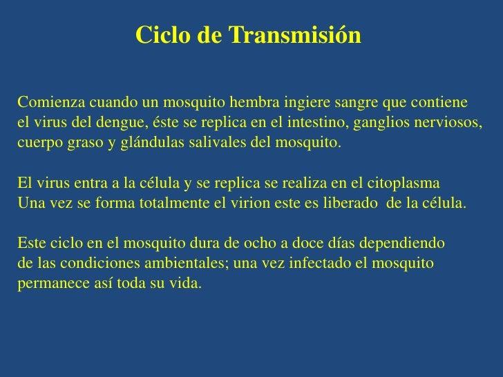 Ciclo de TransmisiónComienza cuando un mosquito hembra ingiere sangre que contieneel virus del dengue, éste se replica en ...