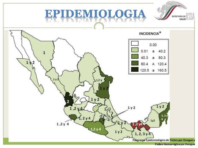  Género Flavivirus,  familia Flaviviridae  ARN  DENV-1 a DENV -4  Esférica, 50nm  Dengue Guidelines for diagnosis, tre...
