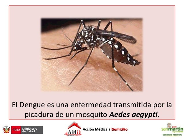 Dengue: Manejo actual Slide 2