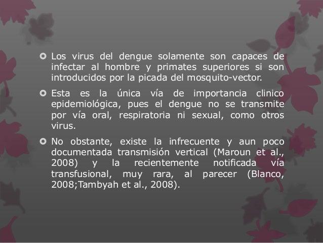  Los virus del dengue solamente son capaces de infectar al hombre y primates superiores si son introducidos por la picada...