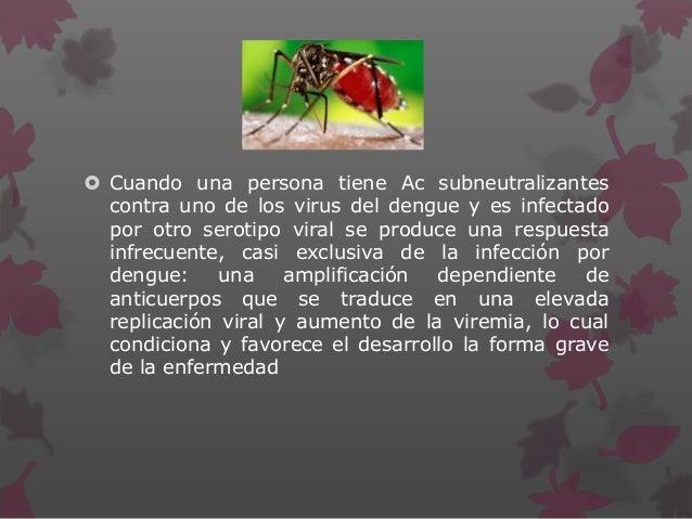  Cuando una persona tiene Ac subneutralizantes contra uno de los virus del dengue y es infectado por otro serotipo viral ...