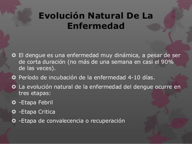 Evolución Natural De La Enfermedad  El dengue es una enfermedad muy dinámica, a pesar de ser de corta duración (no más de...