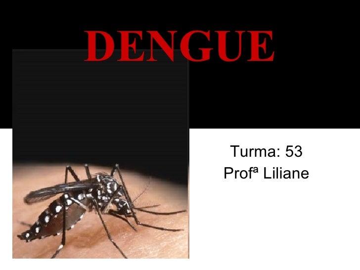 Turma: 53 Profª Liliane DENGUE