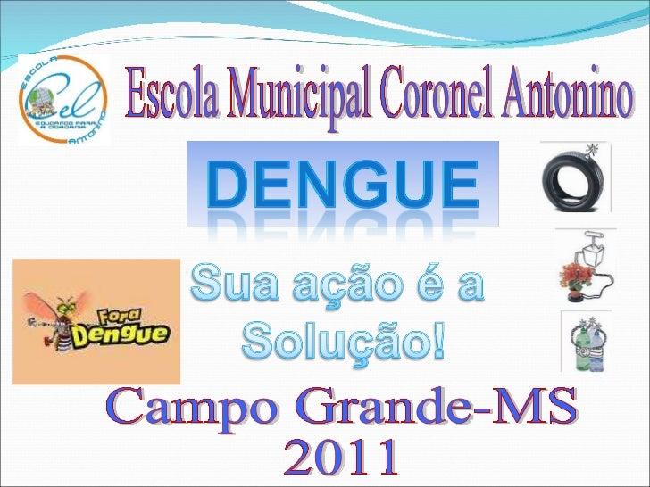 Escola Municipal Coronel Antonino Campo Grande-MS 2011