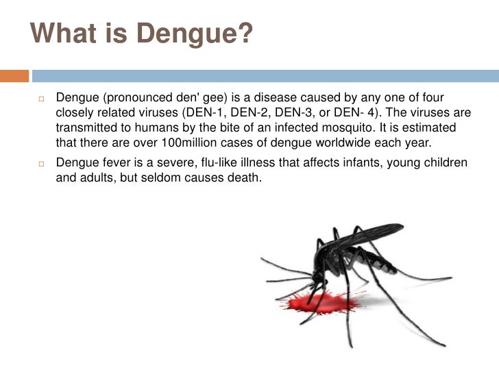Myths and facts about mosquito bites
