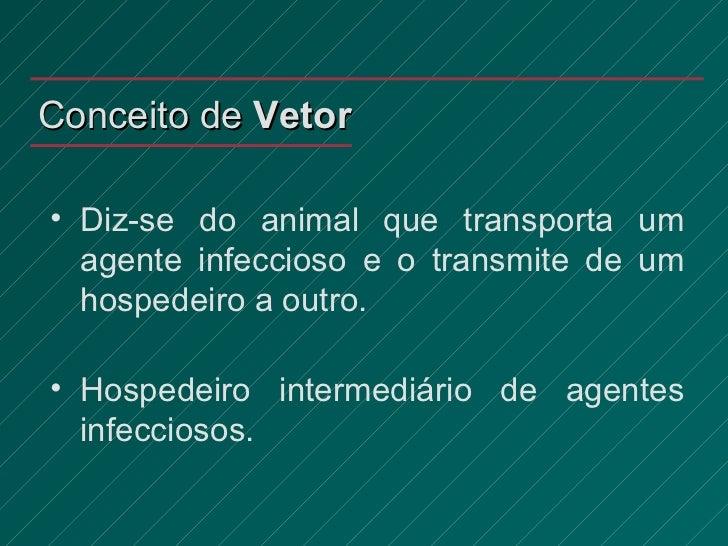 Conceito de  Vetor <ul><li>Diz-se do animal que transporta um agente infeccioso e o transmite de um hospedeiro a outro. </...