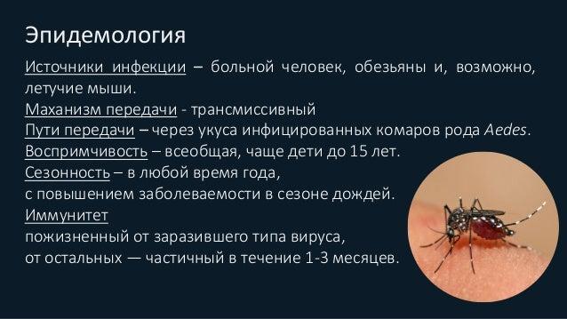 Фазы заболевания Инкубационный период 3—15 дней 1. Начальный период (фибрильный) 2. Критическая фаза 3. Реконвалесценция