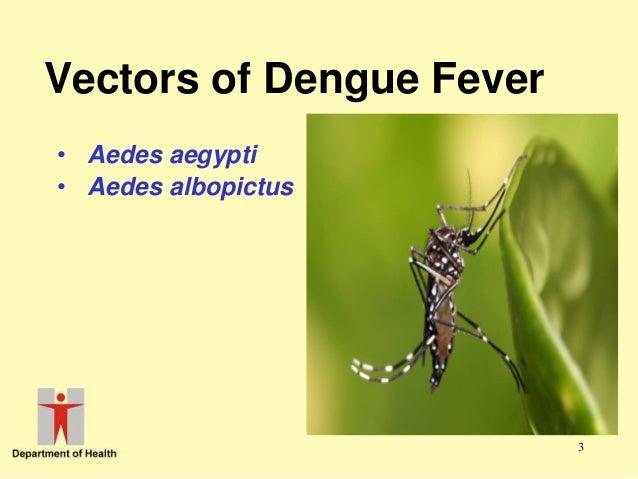 Dengue fever doctor in mohali Slide 3