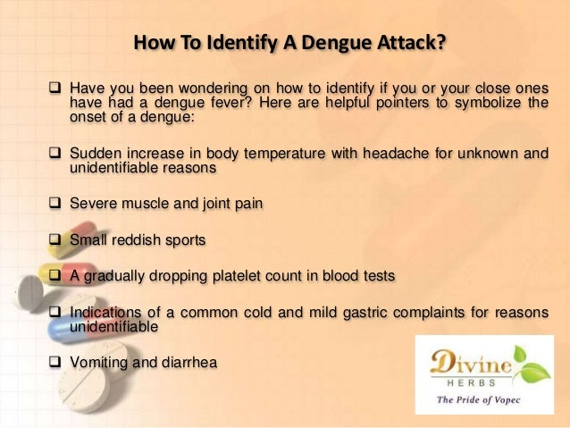 what is dengue fever pdf