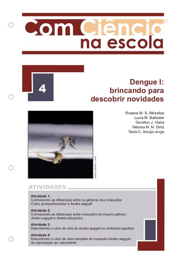 Dengue i   brincando para descobrir novidades