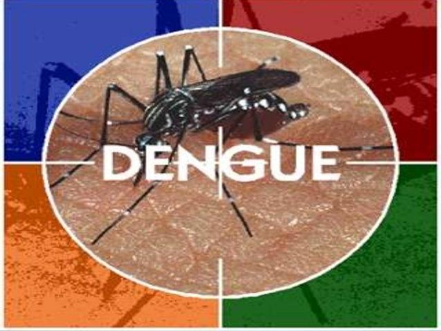 A dengue nas cooperativas dereciclagemAlessandra Dos Reis .Márcia Oliveira.Robson Fernando.Sheila Santana.Orientadora: Pro...
