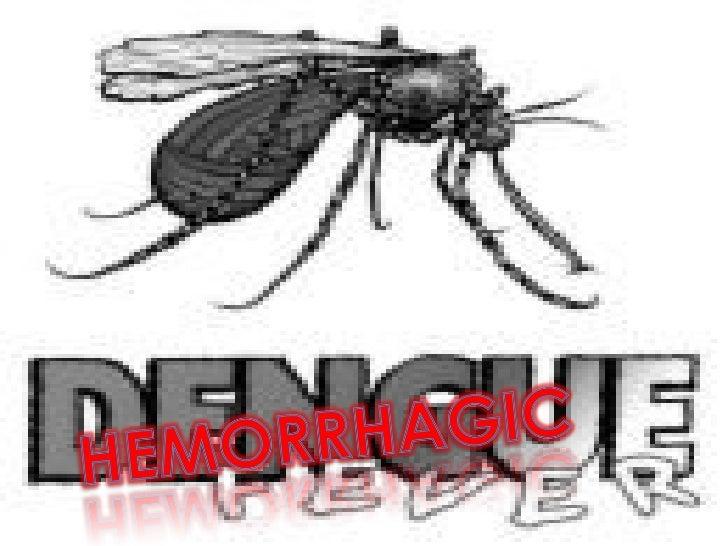 Dengue Fever Power Point