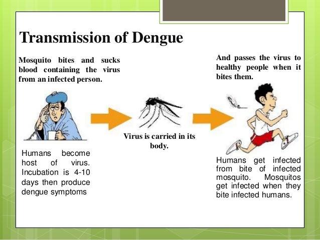 Kontra Dengue Advocates Presentation