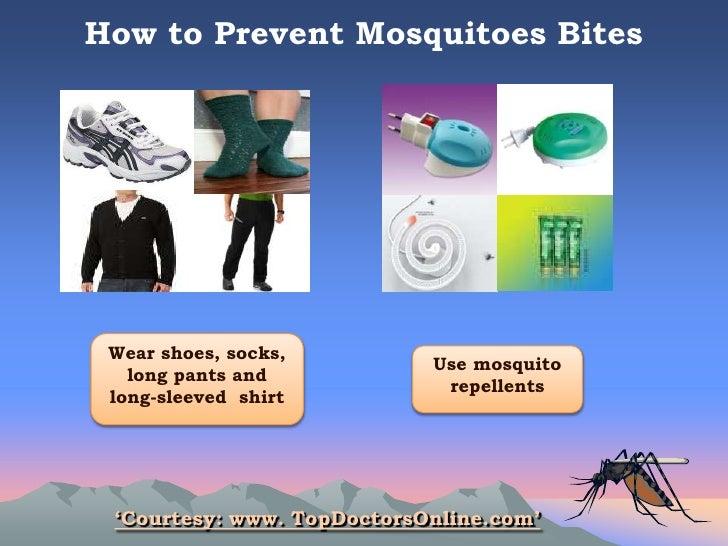 How to prevent dengue fever?