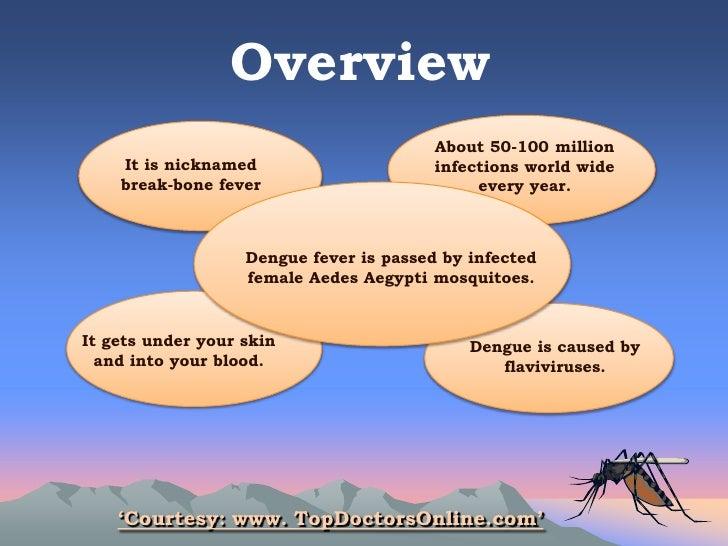 How to Prevent & Control Dengue Fever