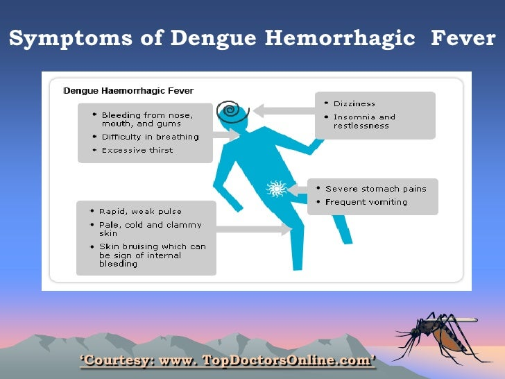 symptoms of dengue essay What is dengue dengue is a viral infection transmitted by the bite of an infected female aedes mosquito estimated 100 million cases of.