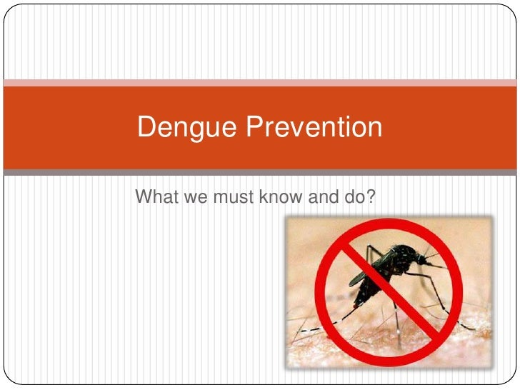 What we must know and do?<br />Dengue Prevention<br />