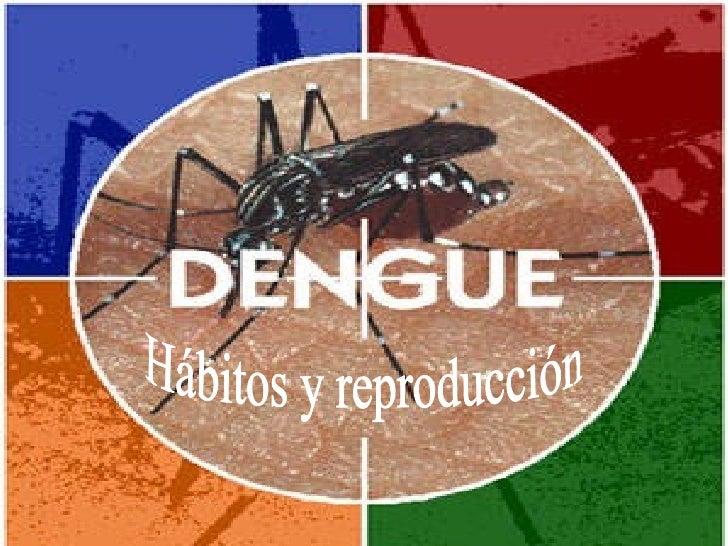 Hábitos y reproducción