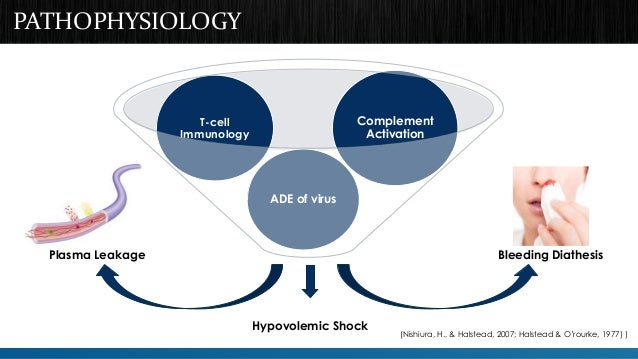 PATHOPHYSIOLOGY  Complement  Activation  ADE of virus  T-cell  Immunology  Plasma Leakage Bleeding Diathesis  Hypovolemic ...