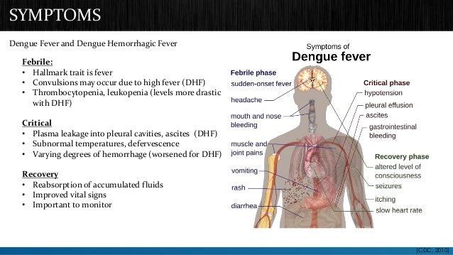 SYMPTOMS  Dengue Fever and Dengue Hemorrhagic Fever  Febrile:  • Hallmark trait is fever  • Convulsions may occur due to h...