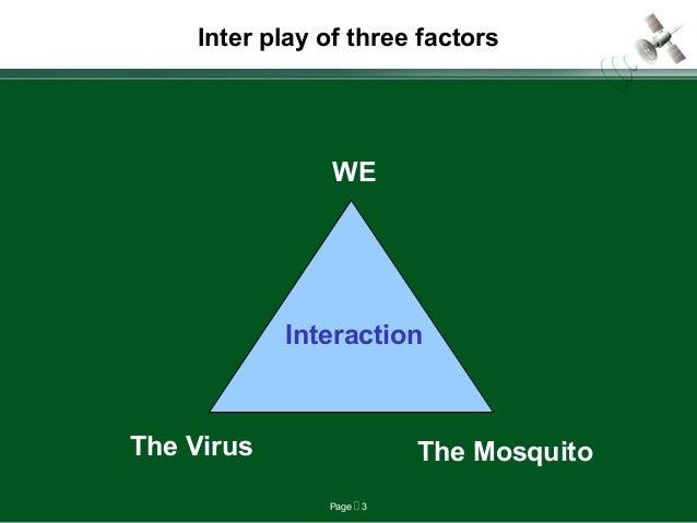 Dengu fever final Slide 3