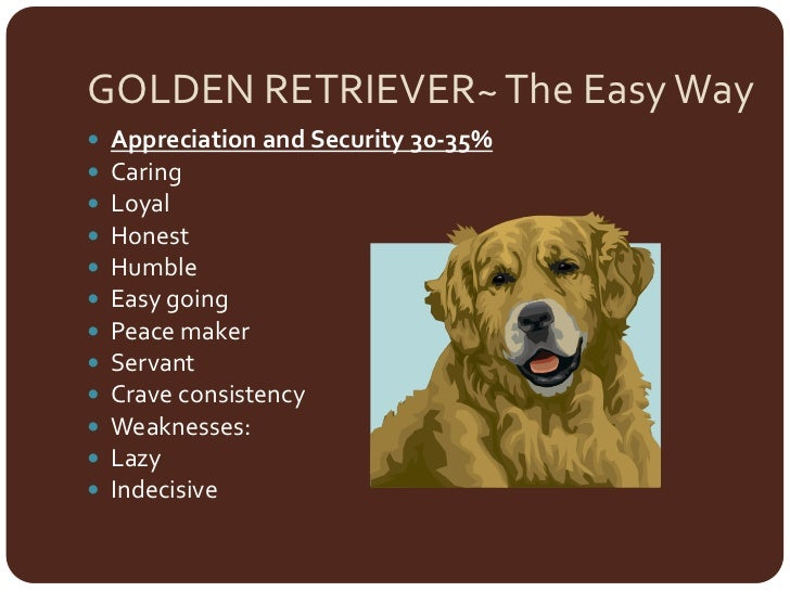 personality test lion otter golden retriever