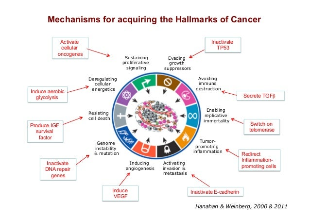 Hallmarks of cancer the next generation