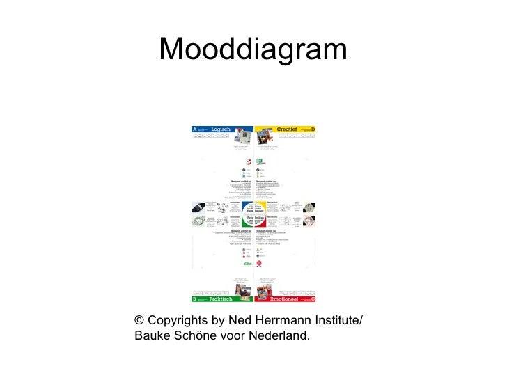 Mooddiagram © Copyrights by Ned Herrmann Institute/ Bauke Schöne voor Nederland.