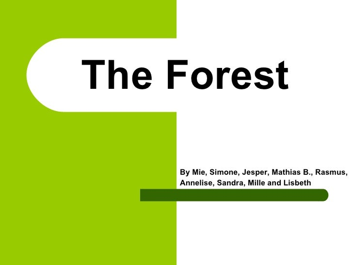 The Forest By Mie, Simone, Jesper, Mathias B., Rasmus,  Annelise, Sandra, Mille and Lisbeth