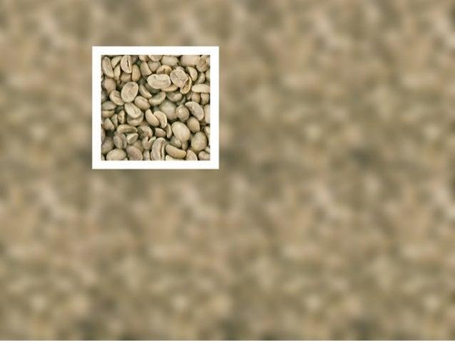 Denominación de origen cafe hondureño 03 2005 Slide 2