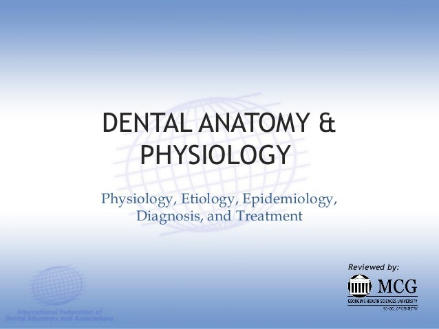 DENTAL ANATOMY & PHYSIOLOGY Physiology, Etiology, Epidemiology, Diagnosis, and Treatment Reviewed by: