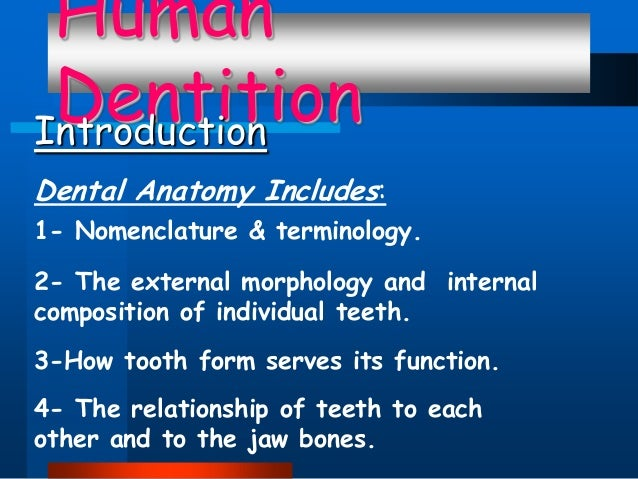 Human DentitionIntroduction :Dental Anatomy Includes 1- Nomenclature & terminology. 2- The external morphology and interna...