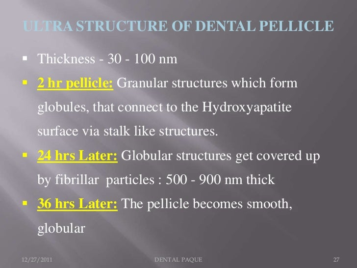 ULTRA STRUCTURE OF DENTAL PELLICLE Thickness - 30 - 100 nm 2 hr pellicle: Granular structures which form     globules, t...