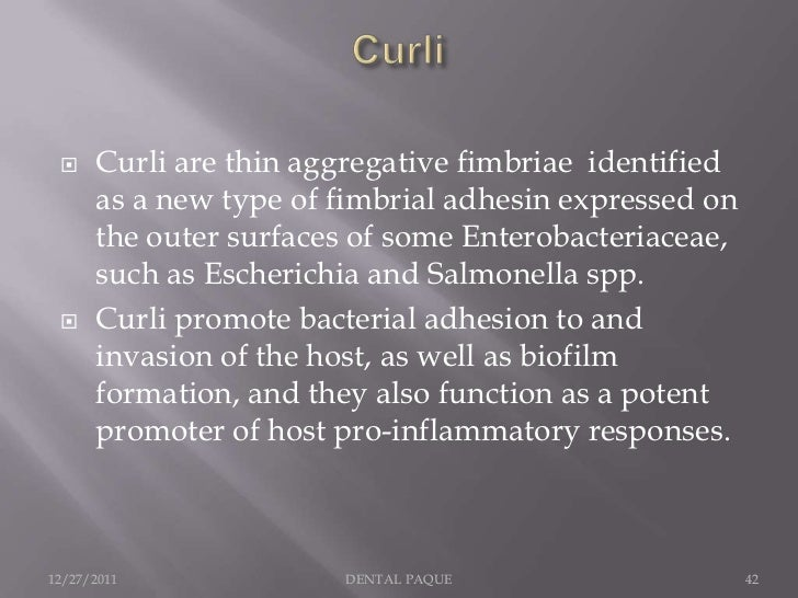     Curli are thin aggregative fimbriae identified      as a new type of fimbrial adhesin expressed on      the outer sur...