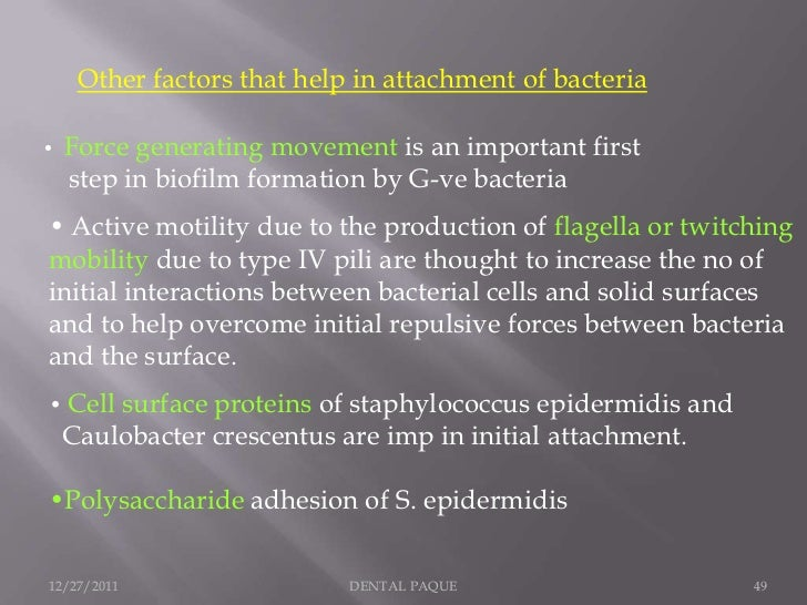 Other factors that help in attachment of bacteria•   Force generating movement is an important first    step in biofilm fo...