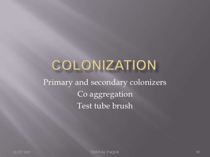 Primary and secondary colonizers                      Co aggregation                      Test tube brush12/27/2011       ...