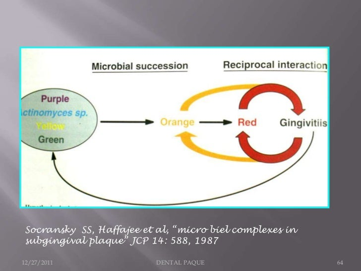 "Socransky SS, Haffajee et al, ""micro biel complexes insubgingival plaque"" JCP 14: 588, 198712/27/2011                DENTA..."