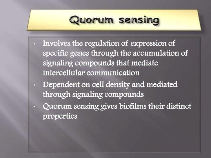 Quorum sensing is involved in the regulation ofgenetic competencematingbacteriocin productionsporulationstress respon...