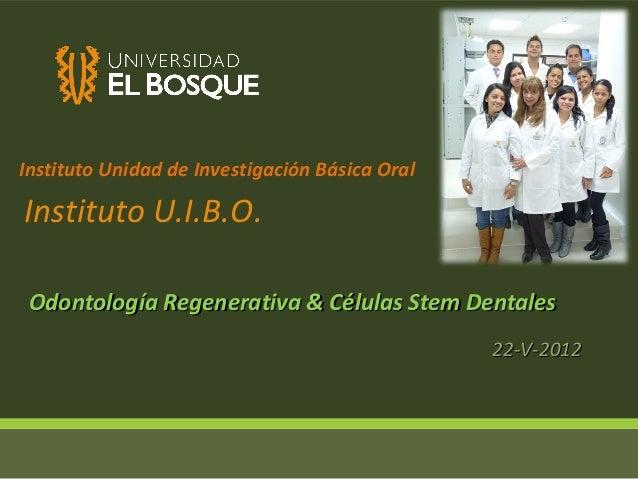 Instituto Unidad de Investigación Básica OralInstituto U.I.B.O. Odontología Regenerativa & Células Stem Dentales          ...