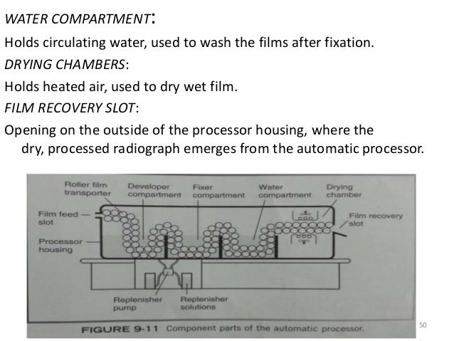 Dental X Ray Film Processing