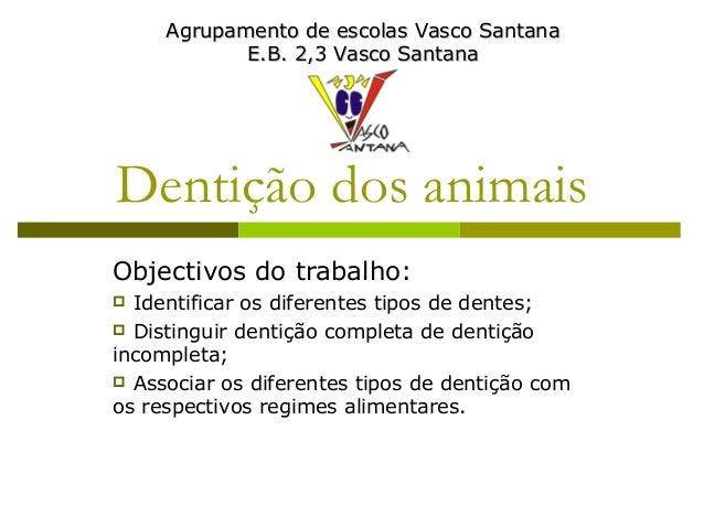 Dentição dos animais Objectivos do trabalho:  Identificar os diferentes tipos de dentes;  Distinguir dentição completa d...