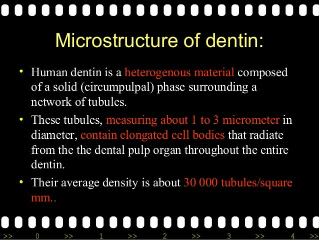 >> 0 >> 1 >> 2 >> 3 >> 4 >> Microstructure of dentin: • Human dentin is a heterogenous material composed of a solid (circu...