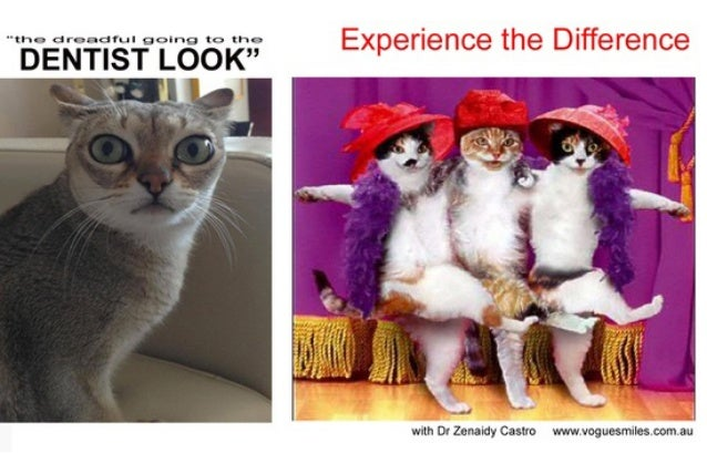 Funny Memes For Lovers : Dentist in melbourne vogue smiles dr zenaidy castro funny caption catu2026