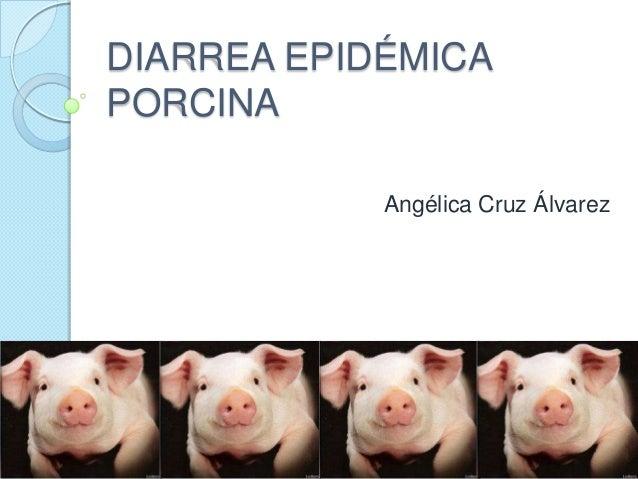 DIARREA EPIDÉMICA PORCINA Angélica Cruz Álvarez
