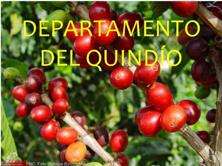 DEPARTAMENTO DEL QUINDÍO